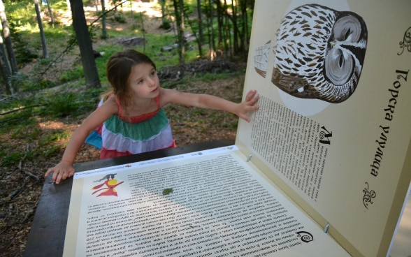 A girl looking at a book with various woodland animals.